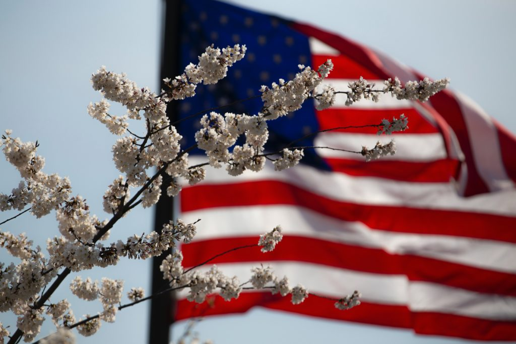 American Flag in the background with flowers in the foreground